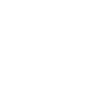 WE ARE THE TEAM.